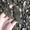 продам жмых подсолнуха технический #1676546