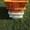 Пищевые хозяйственные пластиковые ящики для мяса молока рыбы ягод овощей в Днепр - Изображение #5, Объявление #1707108