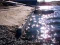 УКРЕПЛЕНИЕ  БЕРЕГОВ рек, озер с гарантией!. - Изображение #3, Объявление #159608