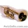 Труба JINBAO JBTR-335