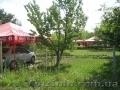 дачный участок-сад, трава,  лето