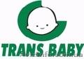 Детские коляски оптом и в розницу Trans baby