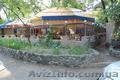Срочно продам кафе на Комсомольском острове!