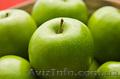 продам яблоки  урожай 2014г