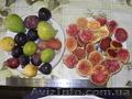 Мандарин, апельсин плодоносящий, комнатный саженцы Кировоград. - Изображение #8, Объявление #980050
