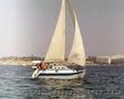 Крейсерская яхта «Панна», Объявление #1039279