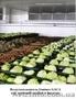 Воздухоохладители  для овощей и фруктов. - Изображение #2, Объявление #276766