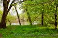 Экологический отдых на базе отдыха Орельский Двор. - Изображение #4, Объявление #1182104