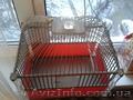 Продам клетку для птиц ручной работы - Изображение #2, Объявление #1265860