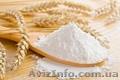 Продам оптом пшеничную муку высшего и первого сорта