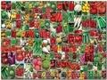 Продам семена овощей по доступным ценам