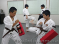 Японская система самообороны Сёриндзи Кэмпо