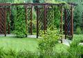 Ландшафтный дизайн и благоустройство под ключ, Объявление #1484438