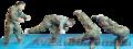 Рукопашный бой,  система Кадочникова,  самооборона.