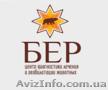 Рентген животных в Днепропетровске