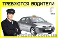 Требуется водитель такси в Польшу, Объявление #1525858