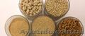 Производство и продажа комбикормов для птицы и животных