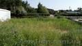 Земельный участок в сосновом лесу на берегу реки Самара., Объявление #1570992