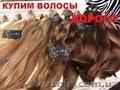 Купим волосы. Скупка волос в салоне  красоты. Вся Украина