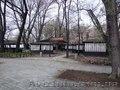 Действующее кафе в парке Глобы - Изображение #4, Объявление #1602256