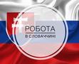 Работа в Словакии по Биометрии и на ВНЖ